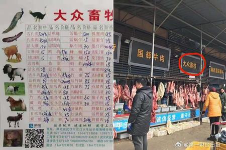 Civetas, crías de lobo y murciélagos: qué relación hay entre la cocina china y el coronavirus de Wuhan