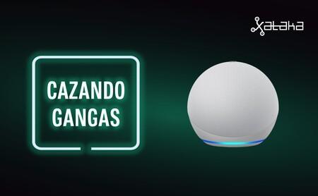 Últimas horas del nuevo Echo Dot a mitad de precio, la nueva Xiaomi Mi Smart Band 6 en preventa y más ofertas: Cazando Gangas
