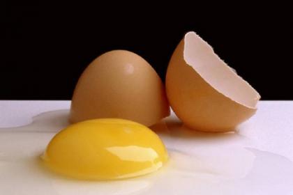 I Concurso de Huevos Fritos en Pamplona