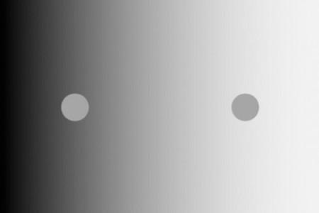 Han mostrado esta imagen a niños recuperados de una ceguera congénita para entender por qué vemos los colores como los vemos