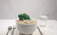 No noodles, la vida oculta de un cuenco de fideos