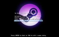 Ye Olde SteamOSe, el instalador alternativo que pone SteamOS al alcance de máquinas antiguas