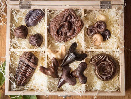 Hardy Says Paleontologists Archaeologists And Entomologists Are Buying And Endorsing The Chocolates