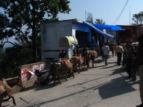 Foto de Caminos de la India: de Haridwar a Rishikech (9/11)