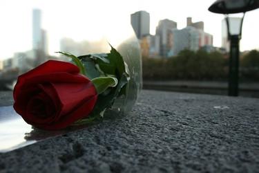 El precio de las rosas en San Valentín