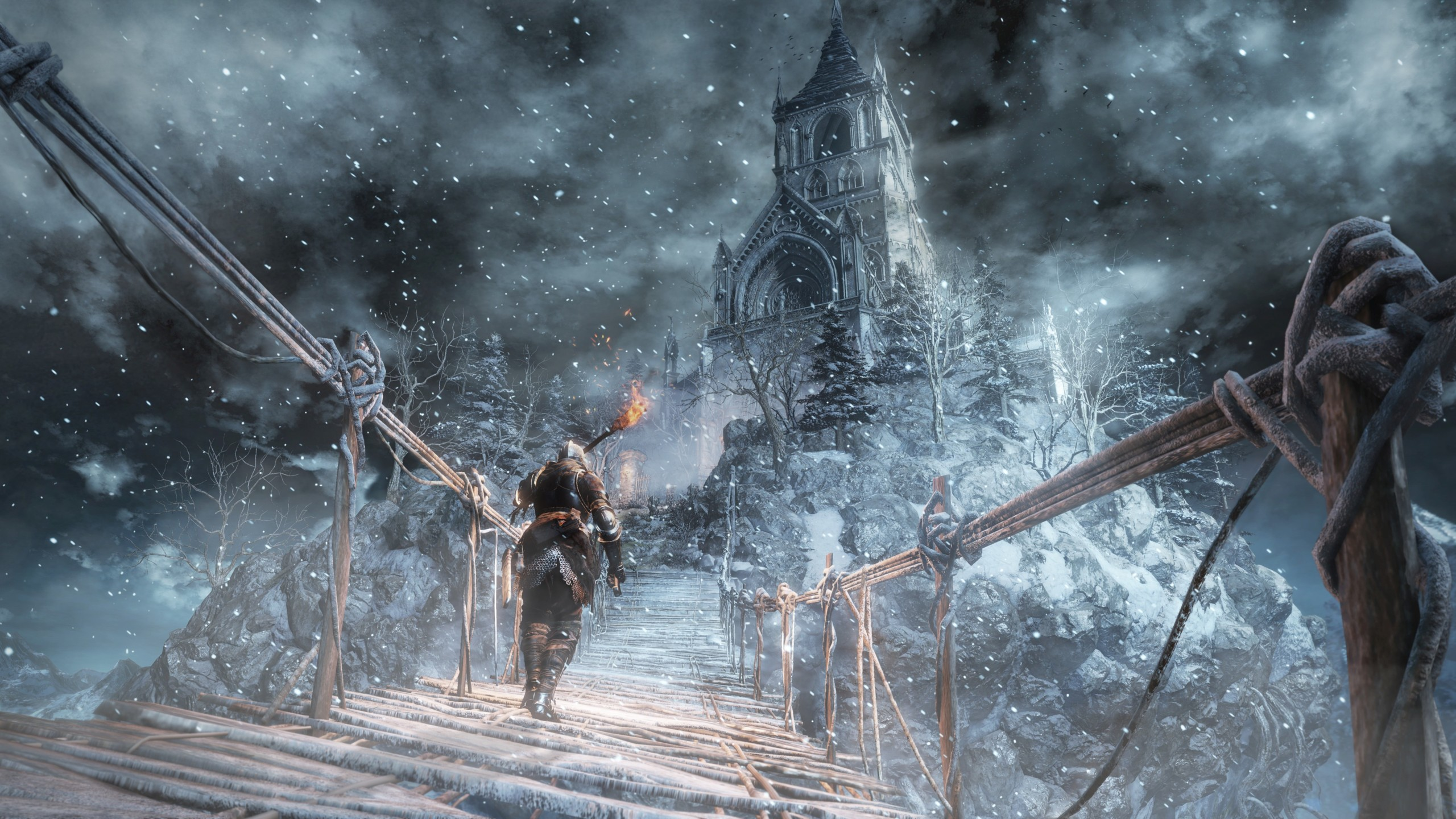 Foto de Ashes of Ariandel (1/12)