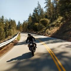 Foto 13 de 16 de la galería harley-davidson-bronx-2020 en Motorpasion Moto