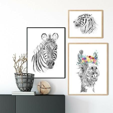 Láminas de animales