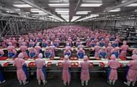 Apple prohíbe a las plantas de producción el uso de químicos peligrosos