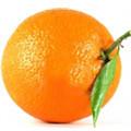 Cruzada Naranja, contra el fraude en Internet