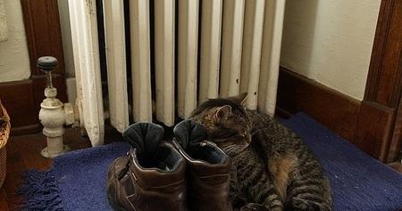 Ya llega el frío; cómo ahorrar en calefacción