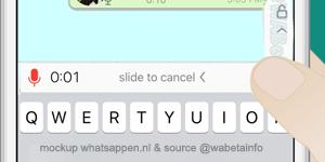 Whatsapp Voz 2
