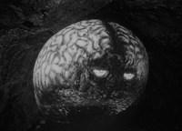 Alienígenas que nos invaden, Sci-Fi de poca monta