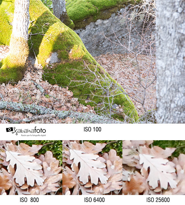 Canon 6D Prueba ISO