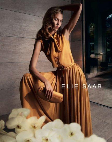 elie-saab-spring-2012-ad-campaignwerwer.jpg