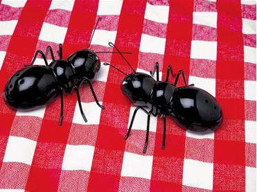 Salero y pimentero de hormigas