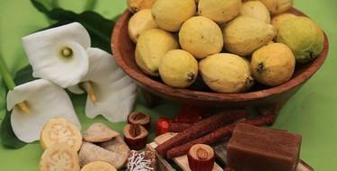 Aguascalientes. Guayabas, uvas, y receta del uvate