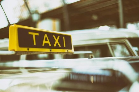 Cocodrilos, cotorras y corales, los taxis que adornaban la Ciudad de México