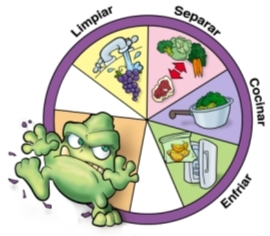 Soluciones para no contraer toxoplasmosis durante el embarazo