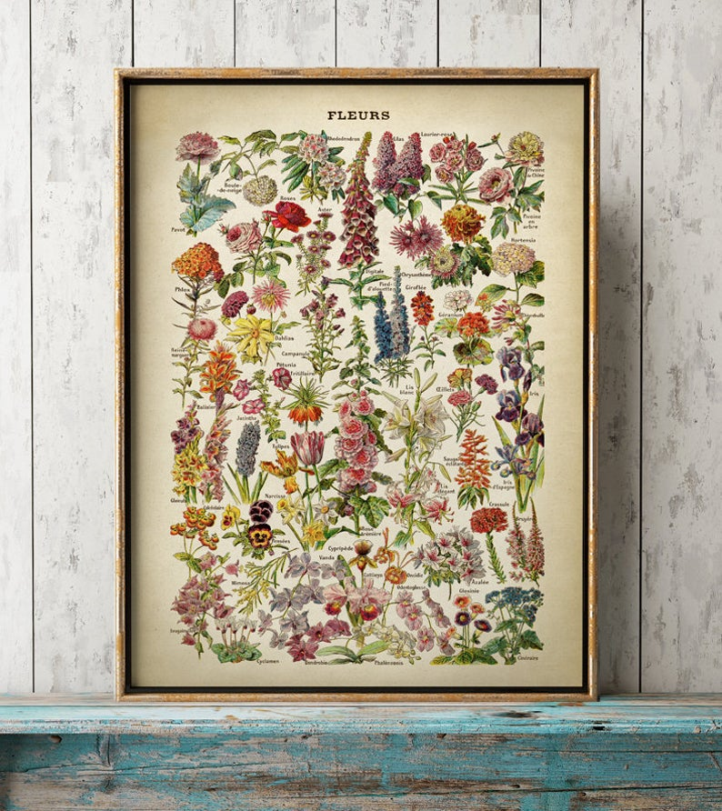 Cartel con flores