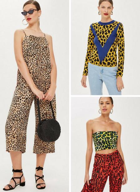 estampado leopardo lowcost