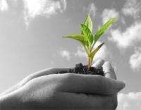 Las diez mejores prácticas para una Agricultura Sostenible (I)