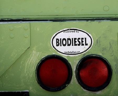 Biocatalizadores para una producción más eficiente de Biodiésel