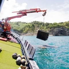 Foto 7 de 7 de la galería bodega-submarina-en-plentzia-bilbao en Directo al Paladar