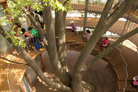 Kindergarten Around Tree Zelkova Fuji Tezuka Architects 27 1