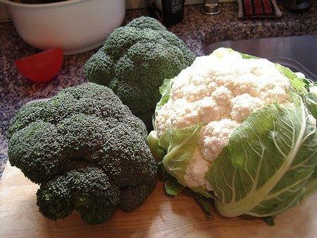 Verduras en la alimentación infantil: coliflor y brócoli