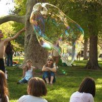 ¿Aprovechas las vacaciones para hacer alguna actividad especial con tus hijos?: La pregunta de la semana
