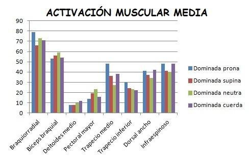 Activación muscular intermedia dominadas