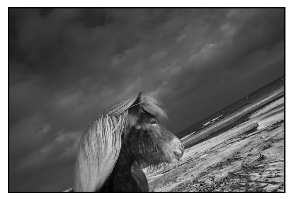 Foto de Leica M Monochrom: fotos oficiales (10/10)