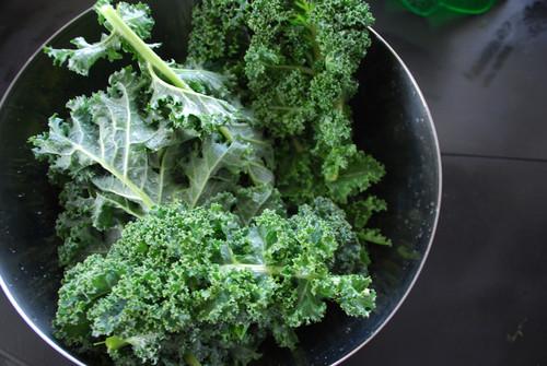 Todo sobre el kale: propiedades, beneficios y su uso en la cocina