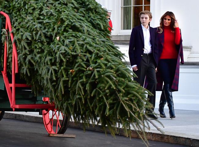 Casa Blanca Arbol De Navidad