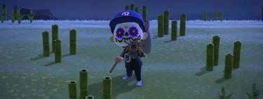 Guía Animal Crossing New Horizons: cómo crear una isla de tarántulas y venderlas por 8.000 bayas cada una