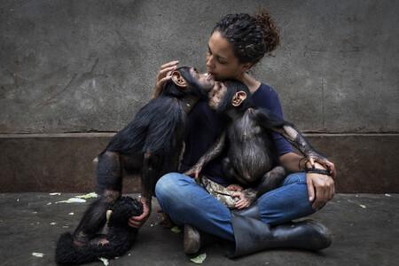 C Brent Stirton Wildlife Photographer Of The Year