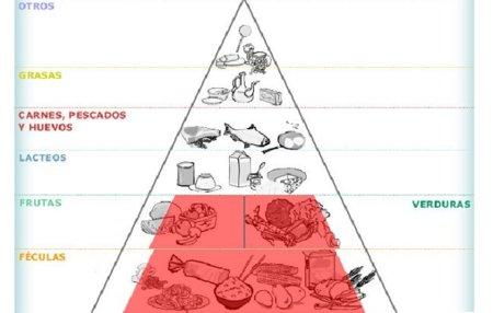 Evalúa tu dieta armando tu propia pirámide de alimentos