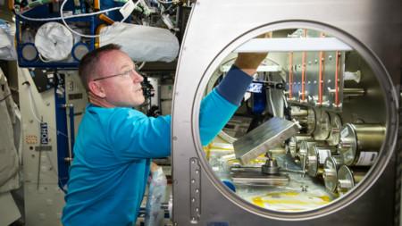 La NASA intentará criar bacterias en el espacio para utilizarlas como alimento y combustible