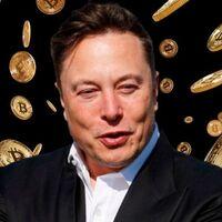 Bitcoin iba a ser la moneda que el sistema no podría controlar, pero cada vez que Elon Musk tuitea sobre él hay revolución en la cotización