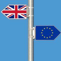 A falta de aprobación final, parece que no habrá Brexit duro: las marcas de coches podrán respirar