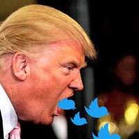 Evan Williams, fundador de Twitter, cree que las redes sociales nos atontan