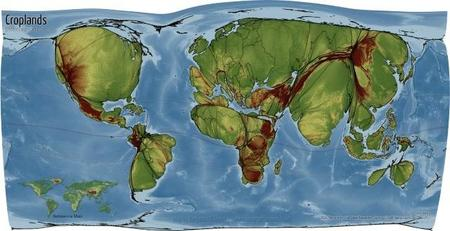 croplandsmap_griddedcartogram.jpg