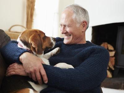 Una mascota puede mejorar la calidad de vida de los adultos mayores