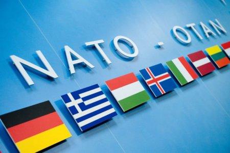 Un borrador 'confirma' el interés de la OTAN en Internet
