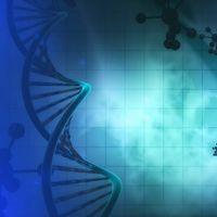 Los malos hábitos no son los únicos que aumentan el riesgo de cardiopatías: también pequeñas variaciones genéticas