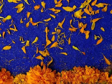Que Significa La Flor De Cempasuchil En La Ofrenda Mexico