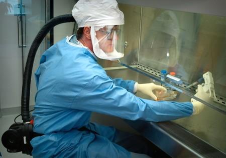 Cura para el coronavirus: quién, cómo y desde cuándo se trabaja en una vacuna y cuál es su situación actual