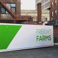 Agricultura de ciudad los 365 días al año: ¿una solución más sostenible?