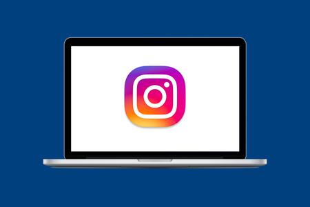 Zine es una herramienta que convierte tu perfil de Instagram en una página web con un diseño cuidado